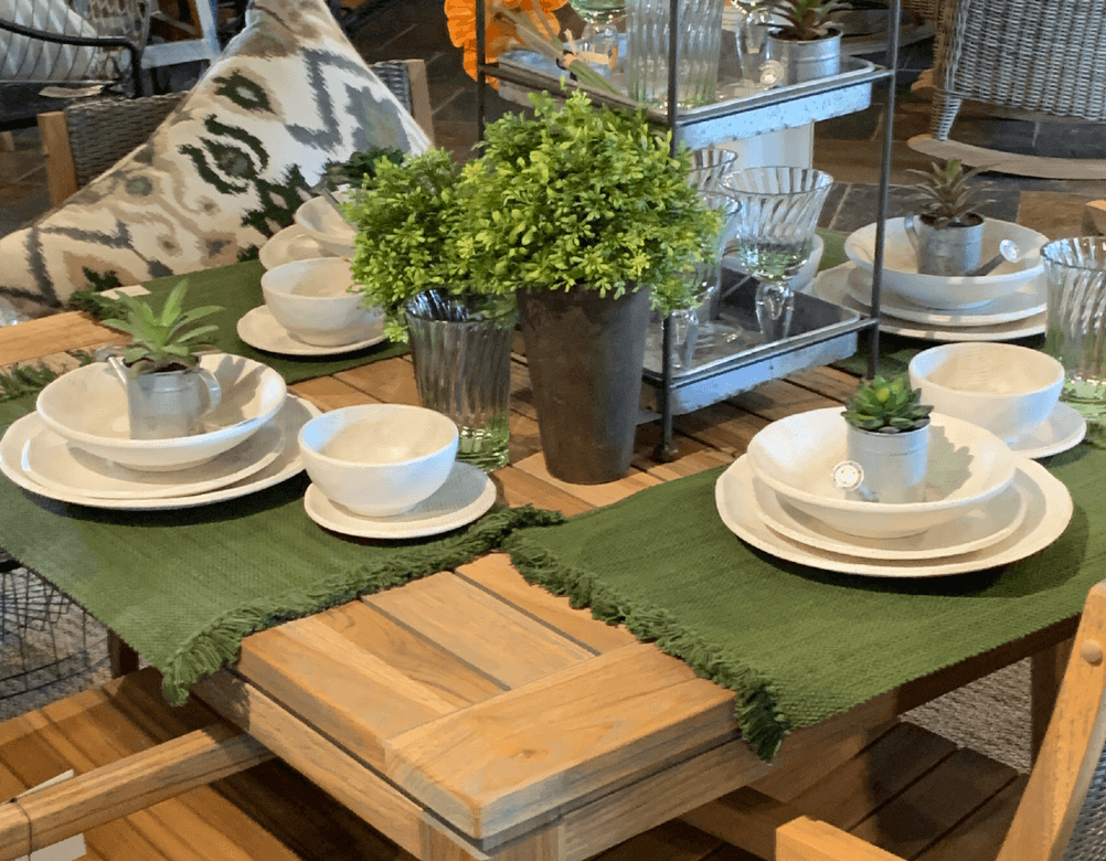 photo of tableware and plants
