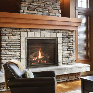 Empire Rushmore TruFlame Gas Fireplace