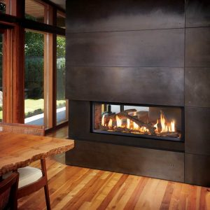 FPX 4415 See Thru Gas Fireplace