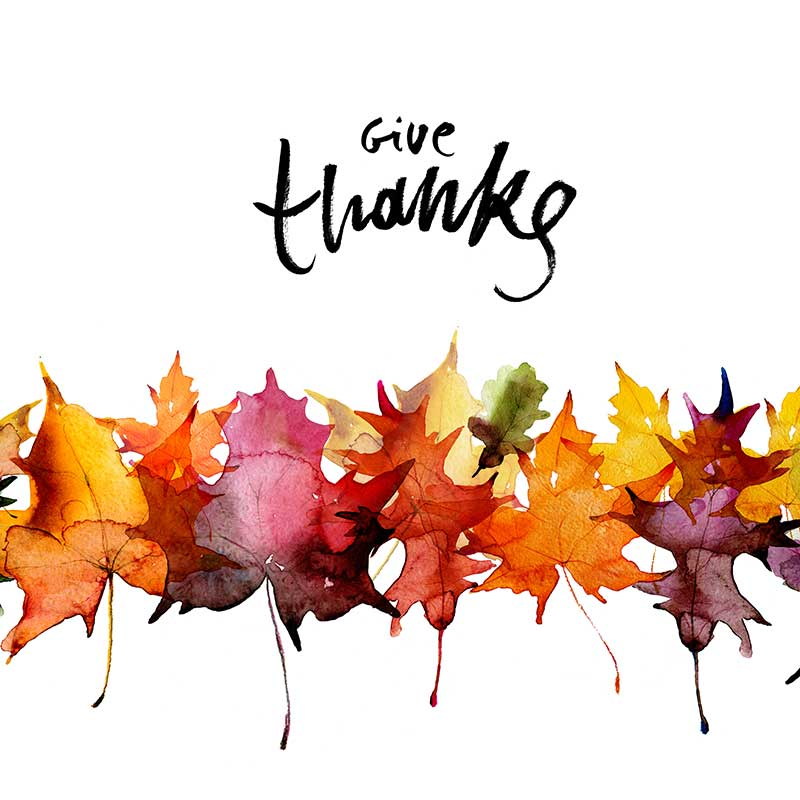 Give_Thanks_Leaves_800