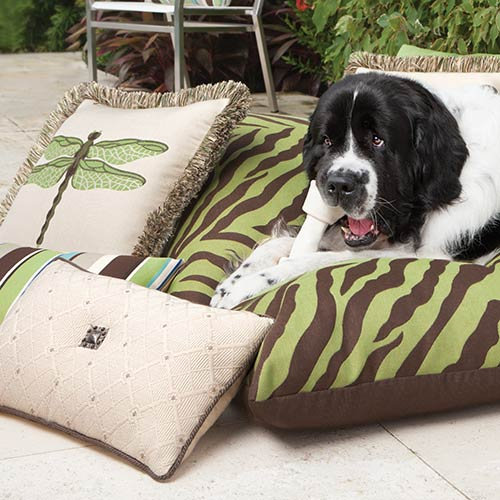photo of dog on outdoor pillow