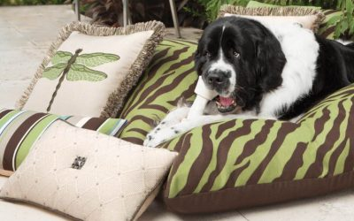 The Best Outdoor Pillow, Ever!